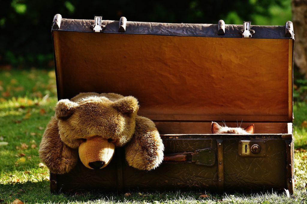 luggage-1650189_1280